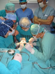 Surgeons in operating room performing surgery.